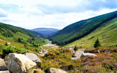 8 Stunning Day Trips From Dublin By Train