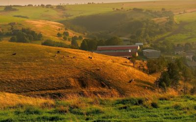 Moldova: Delicious Wine Tours And A Spectacular Countryside